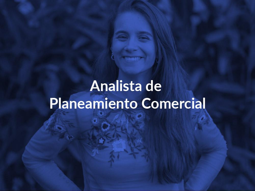 Analista de Planeamiento Comercial